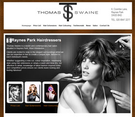 Thomas Swaine Website Screenshot